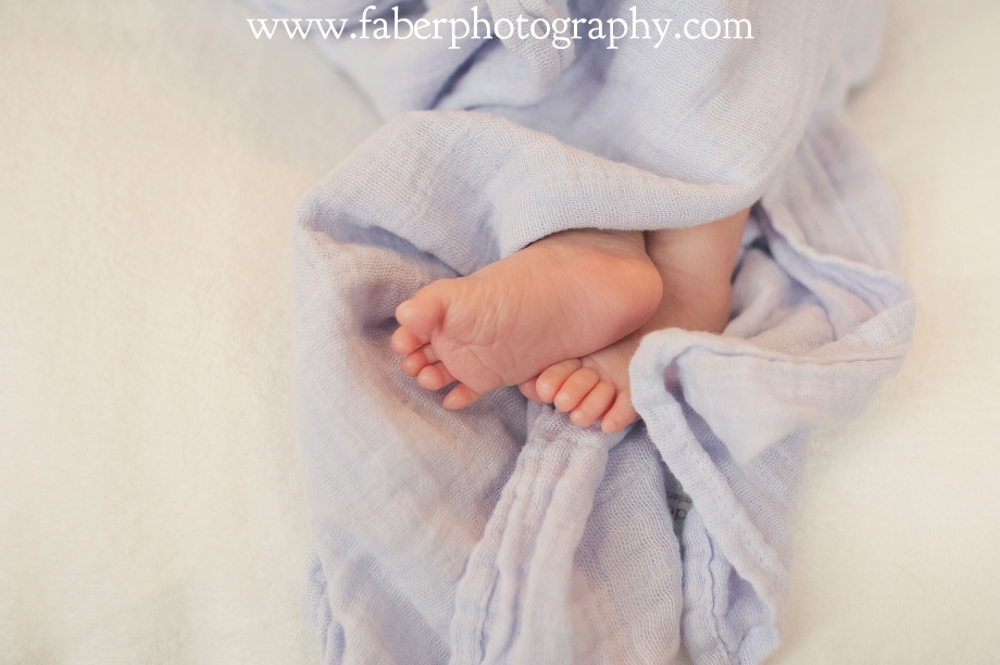 West Bend Newborn Photographer